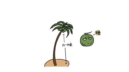 轻知识科普 | 椰子演化的那么好吃对它有什么好处?