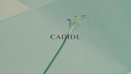 CADIDL 2020 SS - Video by #质点DOT#