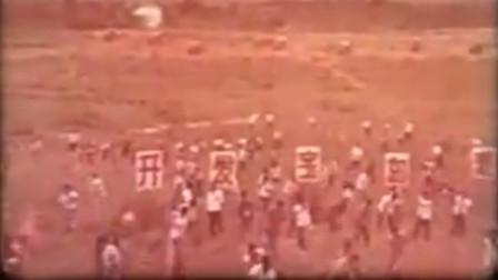 历史回放 知识青年在海南岛 毁林开荒种植橡胶树
