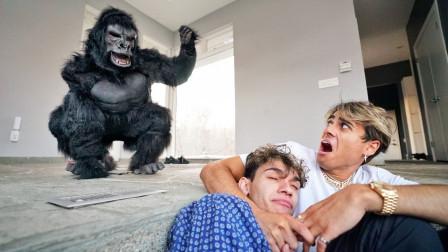 熊孩子家闯进一只黑猩猩!大哥彻底崩溃了!网友:好好伺候着!