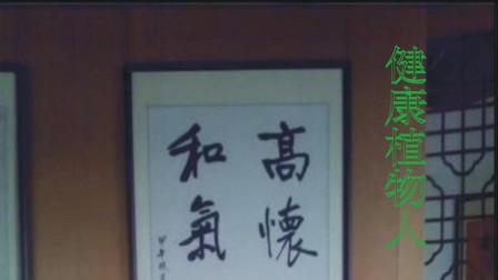 武汉农村有种野草婆婆纳,蓝白粉的外貌堪比花仙子,星汉灿烂无比,还能补贤强腰,解毒消肿