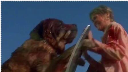狂犬惊魂:妇女刚下车想逃生,不料疯狗就在背后,这下惨了!!精彩片段欣赏