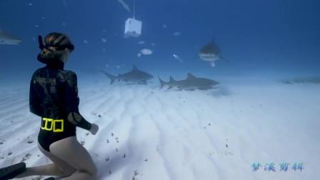 女孩也太胆大了,用手拍鲨鱼