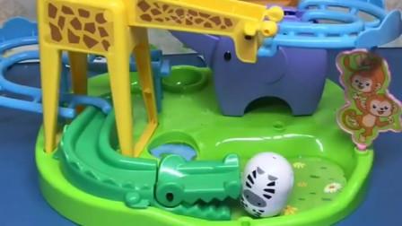 小斑马跟河马去动物游乐园玩滑梯,河马太胖了,它一下子就滑出去了,赶紧救他!