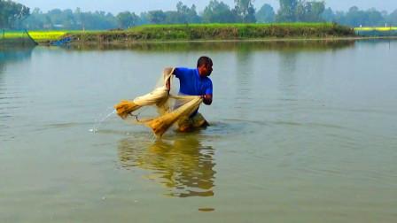 无人管理的野塘,大叔下去撒一网,看看他捕获了什么鱼?