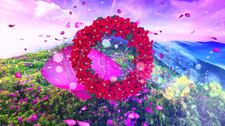 情花朵朵开
