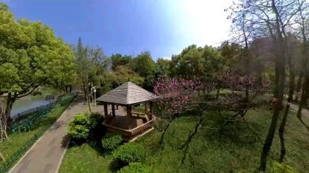 全景空拍温泉公园。