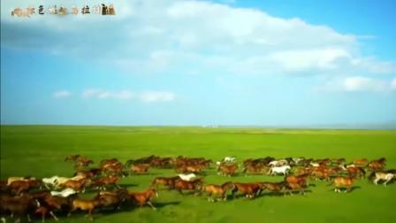 内蒙古乌拉特前旗形象宣传片《绿色崛起乌拉特》来啦