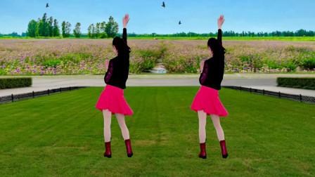 一首草原风广场舞《爱的马蹄》DJ版,欢快动感的节奏,简单好学