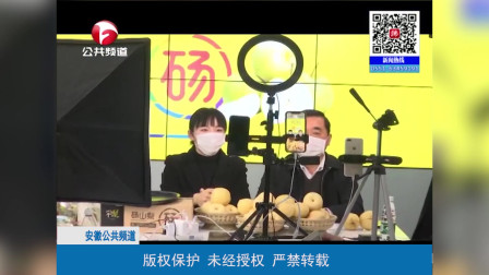 """砀山副县长为果农直播""""带货"""" 3小时售出16940斤砀山酥梨"""