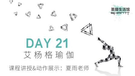 30天瑜伽练习 DAY 21:艾扬格瑜伽——夏雨老师