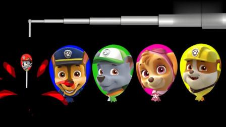 汪汪队彩色气球里面藏着什么呢?少儿色彩启蒙