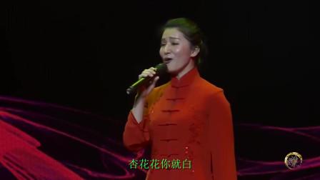 民歌纯享《桃花红杏花白》演唱:张红丽