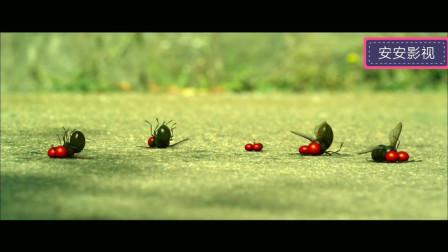 昆虫总动员:小瓢虫英雄救美,击败一群,收获了爱情