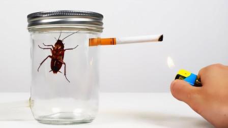 如果小强连续抽一包烟到底会怎样?老外亲测,看完真是不淡定了!