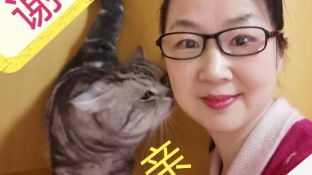 小姜学艺 我的抗疫生活 南阳梅苑京韵