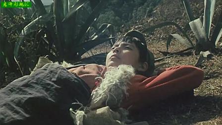 双头鹰之谜6: 杨洪魁、勤刚分清敌我,终将敌人一网打尽,阿大被