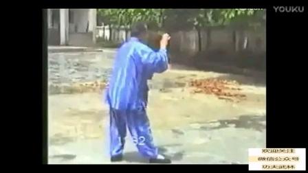 經典 一代宗师杨澄甫次子杨振基1992年演示的娣传杨氏太极拳 珍貴视频