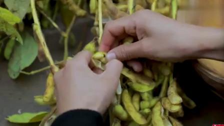 李子柒:熬个豆浆再蒸几块紫薯米糕,再忙都要好好吃早饭啊!
