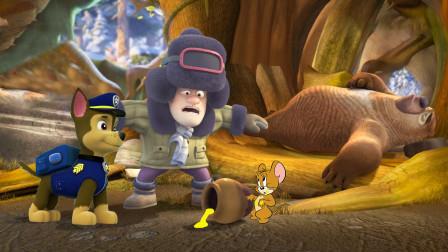 熊出没光头强叫不醒熊二,汪汪队阿奇找到猫和老鼠杰瑞询问情况