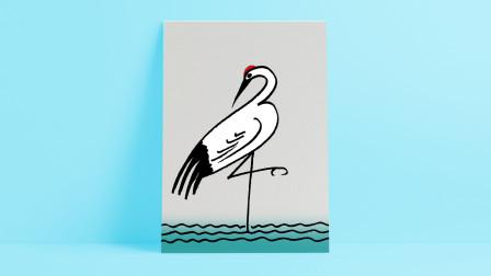 白鹤插画窦老师教画画