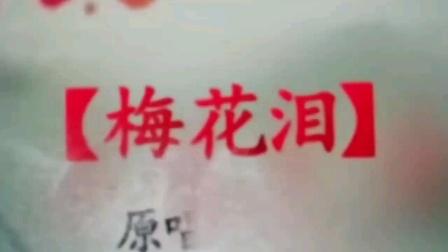 二胡琵琶古筝合奏《梅花泪》湘湘田琵琶演奏:通辽市赵万玉二胡音乐作品集。