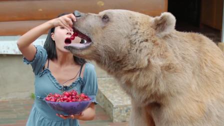 你们都说熊可爱,有没有考虑过狗子的感受啊!老二就该被冷落吗?