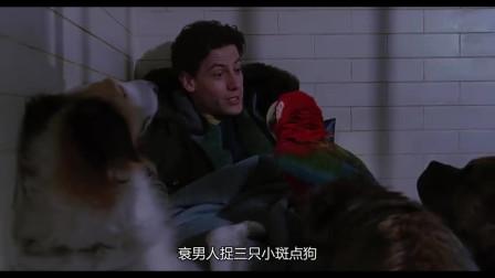 102斑点狗:小鹦鹉绝了,唱歌催眠了狱警,我也想养一只