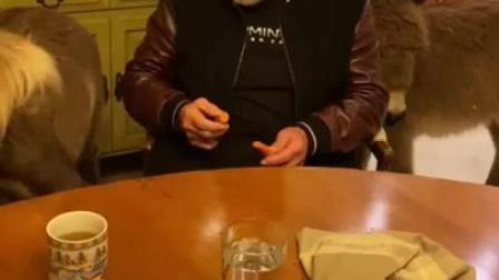 施瓦辛格发视频呼吁大家不要出门,身边萌宠太抢镜