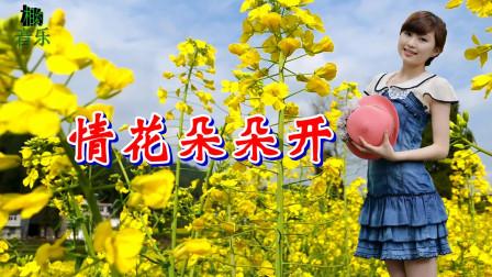 一首情歌《情花朵朵开》DJ舞曲,唱的情深意浓,不知感动了多少有情人!
