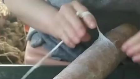 这是火腿肠衣的制作方法,原本以为火腿肠衣,是直接用动物肠子做成的!
