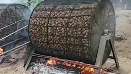 自制烤炉,新鲜核桃用火烤,我还是第一次见!