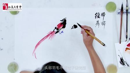 国画教程:红色寿带鸟的画法 太美了精彩