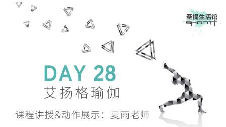 30天瑜伽练习 DAY 28:瑜伽提升免疫力——夏雨老师