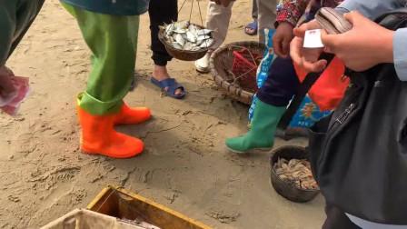 赶海抓到好多这种小鱼,拿到市场一下就被人抢光了