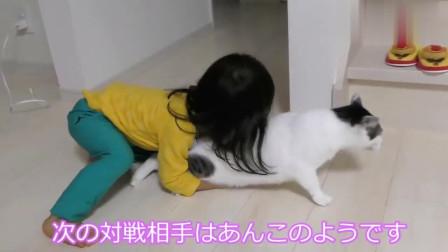 工具猫:今天又是被强撸的一天