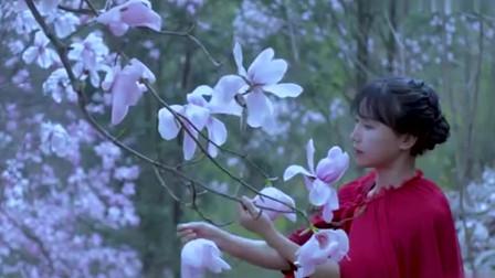 子柒美食秀:踏马去寻花,摘下正盛开中的辛夷,给喜欢她的你们