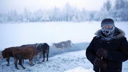 生活在北极的雅库特人,靠吃什么食物生存?看着让人不敢相信!