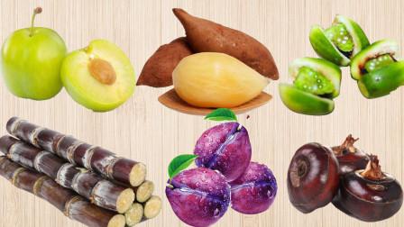 认识雪莲果等6种新鲜美味水果,乐宝识果蔬