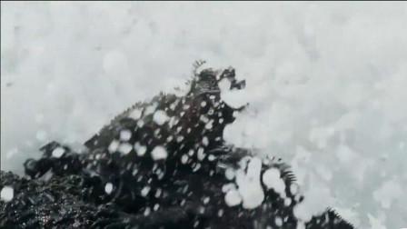 纪录片推荐《地球脉动2》:唤醒世人珍惜地球,对抗全球气温变暖