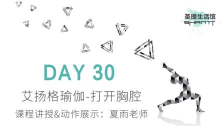 30天瑜伽练习 DAY 30:艾扬格瑜伽,打开胸腔——夏雨老师