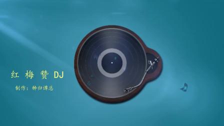 红梅赞DJ版电子琴音乐