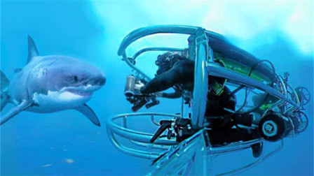 男子作死近距离拍摄鲨鱼,结果却突遭鲨鱼袭击,镜头拍下惊险全过程!