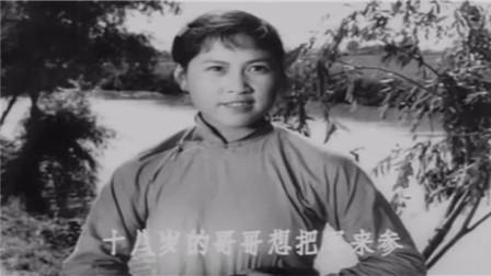 电影《柳堡的故事》插曲 九九艳阳天