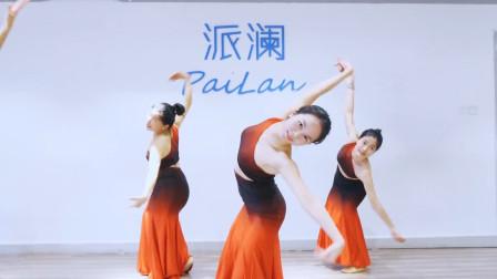 民族舞《彩云之南》,手臂伸长舒展,c位老师的动作就是漂亮!
