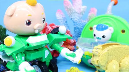 怪兽伪装成章鱼攻击巴克队长 小呆呆变身机甲勇士救援
