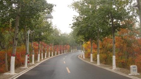 生态彩链 靓丽景色(2008年)