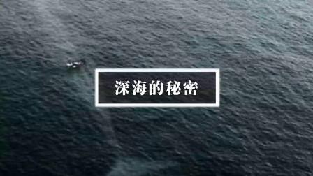 深海一万米!感受一下来自深海的恐惧吧!