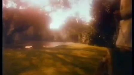 1983 remy Martin xo