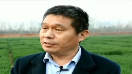 央视新闻联播 2020 国家科技强力助农 春耕生产顺利推进